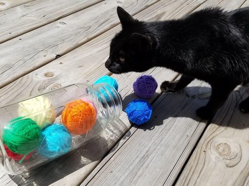 DIY cat toy balls