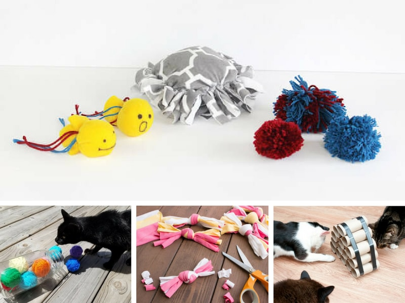 DIY cat toys - How to make cat toys out of household items