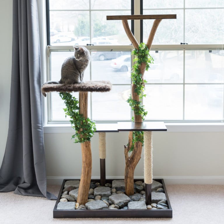 DIY real cat tree by Brittany Goldwyn