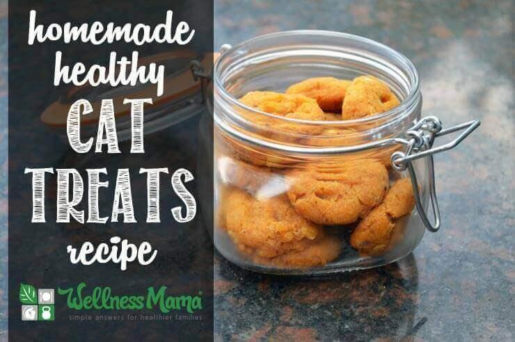 Healthy Homemade Cat Treats Recipe by Wellness Mama