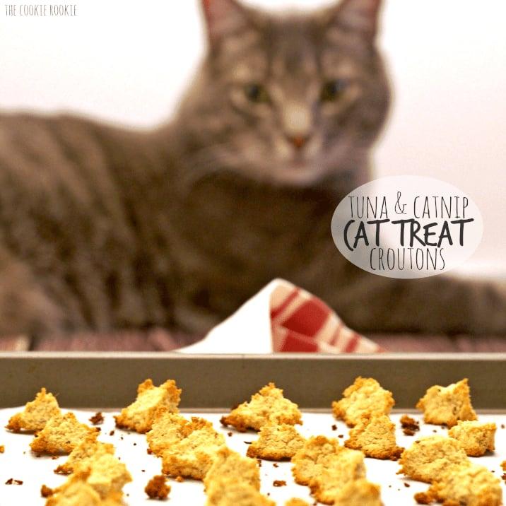 Homemade Salmon and Catnip Cat Treats
