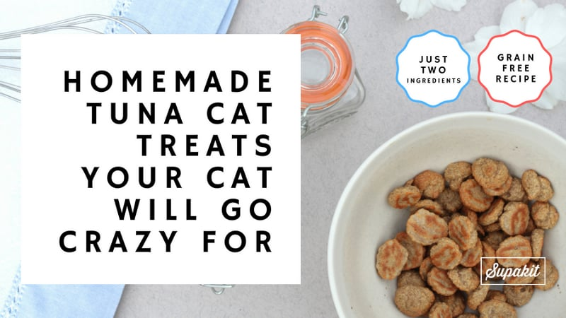 Homemade Tuna Cat Treats Your Cat Will Go Crazy For from Supakit®