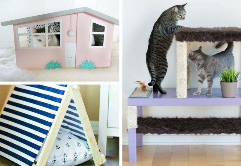 DIY cat furniture to make at home
