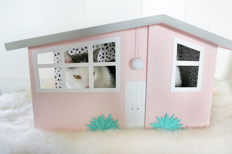 DIY kitty scratch house