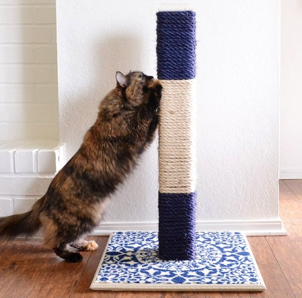 DIY cat scrathing post